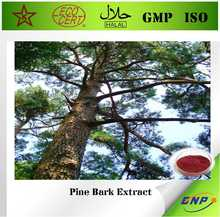 BNP GMP&KALAL&ISO&HACCP professional supply 100% natural high quality Pine Bark Extract with 95% Proanthocyanidins