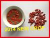 HOT!!!!!!!!china medlar fruits-Dried Ningxia Goji Berry for sale