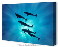 Custom dropshipping cute dolphin canvas paintings, canvas prints