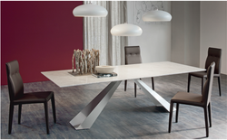 Modern Fashion 2 Stainless Steel Legs Wooden Dining Table And Chairs Designs