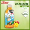 houssy organic mango noni juice with coconut pulp