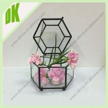 Tons of cool stuff, especially if you're a terrarium planter // MOQ 24pcs DIY air plant wholesale glass terrarium vase