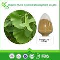 flavonóides de folhas de ginkgo biloba extrato de pó