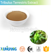 Organic Plant Extract Tribulus Terrestris/Tribulus Terrestris/Tribulus Terrestris Extract