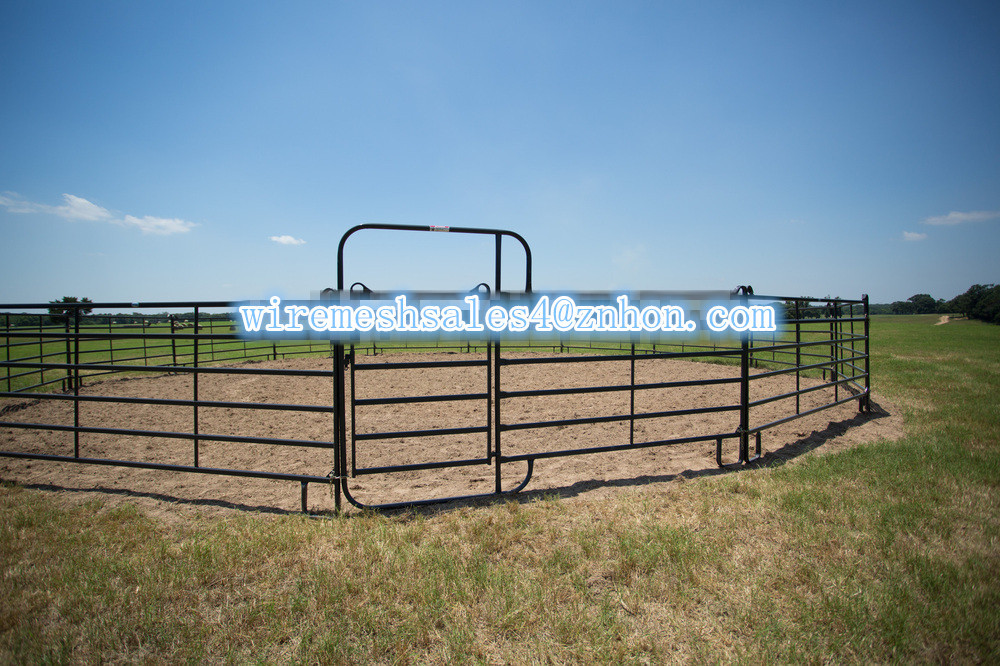 Hot dipped galvanized pipe welded corral panels horse