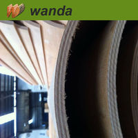 plywood ceiling panel / laminate plywood / mold resistant plywood
