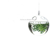 Hanging hydroponic vase spherical micro landscape bottle terrarium hanging glass orbs for plant .