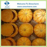 Chinese Good-quality Frozen Mini Pumpkin