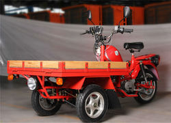 New Model Cargo Motorcycle 3 Wheel Motorcycle/Tricycle