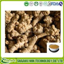 Top Quality Natural Radix Notoginseng Extract Powder