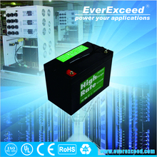 EverExceed high rate sealed rechargeable lead acid battery