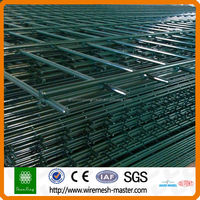 Alibaba China 10 years experience Galvanized Green Double Wire Fence
