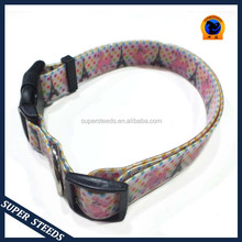fancy dog collars for small dogs