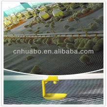 Huabo auto nipple drinking broiler farm