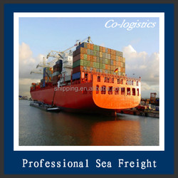 High competitive and top freight forwarder ocean freight shanghai to vancouver