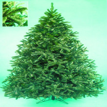 New Decorations Wholesale Fashion Pvc Christmas Tree with Ornament