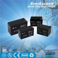 EverExceed 12v 20ah small valve regulated rechargeable battery