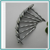 Roofing Nails Colorful Umbrella Head with Best Price