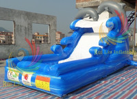 cheap price Dolphin dry and wet slide for children