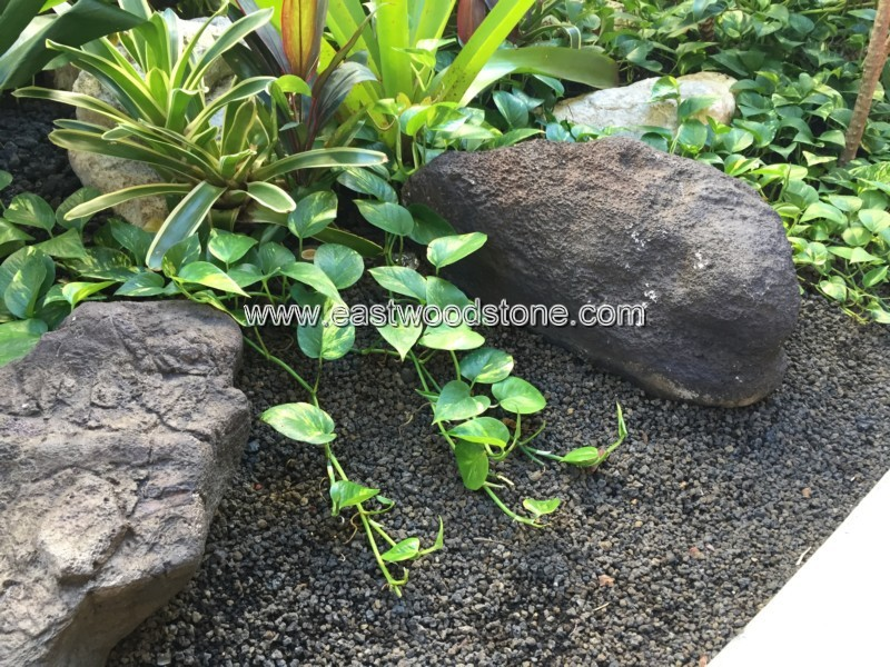 Lava Rock Plants Natural Organic Lava Rocks For
