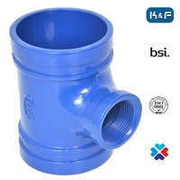 Ductile Iron Grooved Female Threaded Union Reducing Tee