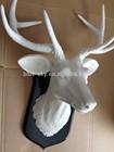 Cervos branco Faux taxidermia resina cervos escultura cabeça cabeça de Animal de parede pendurado escultura