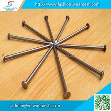 Building common wire nail , Construction Common nail iron nail factory