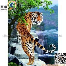 PET/PP 3D foto decorativa foto