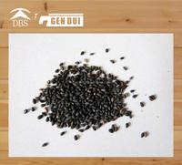 sesame seeds in dubai