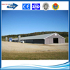 Prefabricated steel poultry broiler house