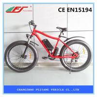 2015 Hot sell cheap electric bike kit CE EN15194 (FJ-TDE07)
