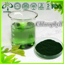 Natural puro clorofila polvo chlorophyl