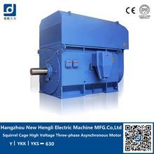 low price china 3000kw energy efficient ac motor