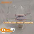 de alta pureza de creatina éster fosfato de sodio