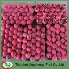 Good quality huaniu apple fruit market