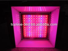 New inspiration 108w black star led grow light with 5band and 6band & High power 108w LED Grow Light(HY-G-108w)