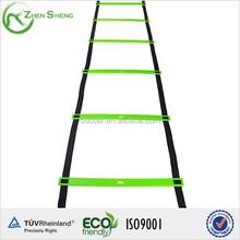 Zhensheng sports agility ladder