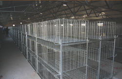 FRD-3 Tier or 4 Layer Chicken Cage For Broiler Sizes For Pakistan Farm