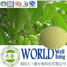 Hot sale Olive leaf extract/Oleuropein 40%/Olive Leaf powder/immune booster plant extract