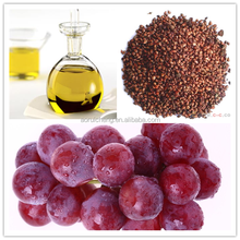 Grape Seed Oil/Grape Seed Oil Extraction/Cold Pressed Grape Seed Oil