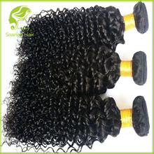 Afro Kinky Human Hair, Afro Kinky Curly Weaving Hair, Afro Textured Hair
