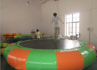 Good Quality Inflatable Jumper WaterPark Fun Sport