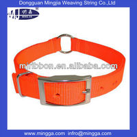 bright nylon collar with buckle for dog