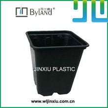 Nursery Square Cup Pot Plant