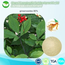 100% Natural Factory Supply 80% Ginsenosides Panax Ginseng Root Extract