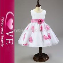 2015 nuevo venir precioso Flor de hadas Party Girls mejores regalos Niño Princesa Vestido rosa