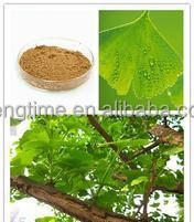 Ginkgo Biloba leaf Extract /Herbal extract ginkgo extract powder dried ginkgo biloba leaves