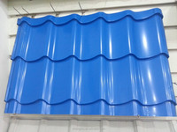Steel Coil Manufacturers RAL 5012 Sky Blue PPGI Color Coated Coils for Metal Roof