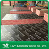 Poplar, Eucalyprus, Birch, Pine Core /Outdoor Usage laminated phenolic board/film faced shuttering plywood for construction