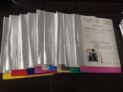 Plastic File Folder, Medical file, Record File folder (BLY8 - 2031 PP)